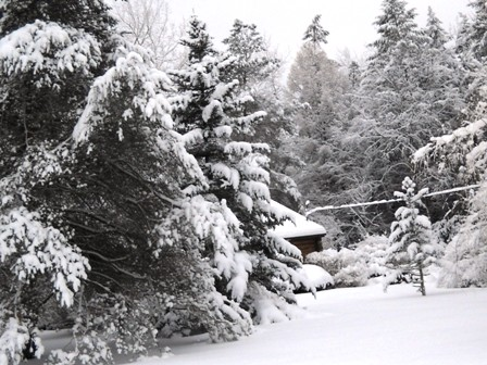 A glimpse of my home, a log cabin, in the snow