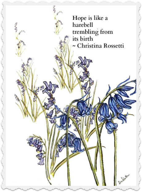 bluebell-collage2 with text and border