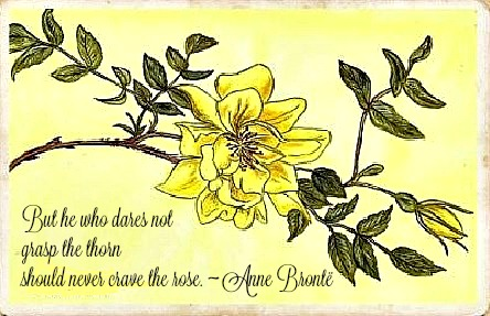 Yellow Rose DM Denton 3 with text