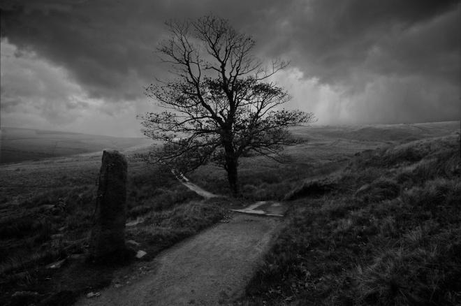bronte_moors_by_wandereringsoul