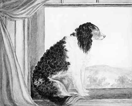 Anne Bronte's unfinished portrait of her dog, Flossy